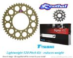 520 Pitch Std. Gearing: Renthal Sprockets & Gold Tsubaki Sigma XRG Chain - BMW S1000RR (2015-2017)